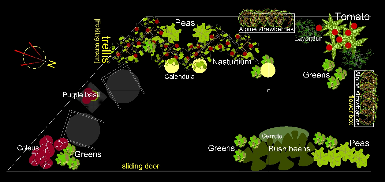 Small Garden Plan My Balcony Container Vegetable Garden Getting
